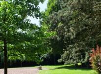 Parc Germinal (1)