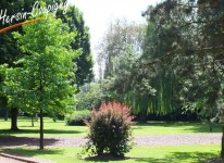 Parc Germinal (10)