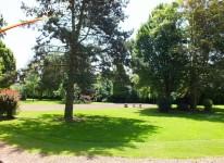 Parc Germinal (9)