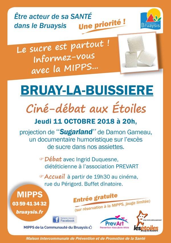 Flyer MIPPS ciné-débat Sugarland (Copier)